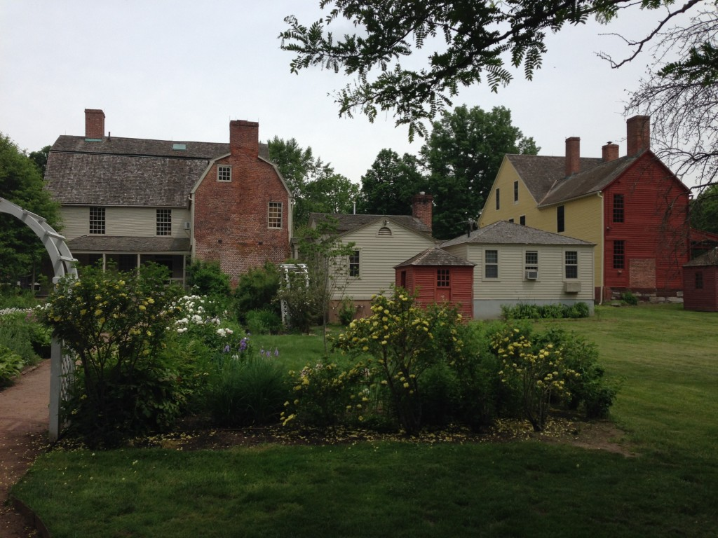 From the rear Wethersfield, CT, 6-4-14