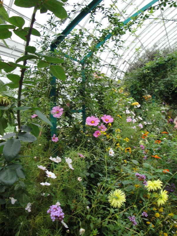 conservatory-3
