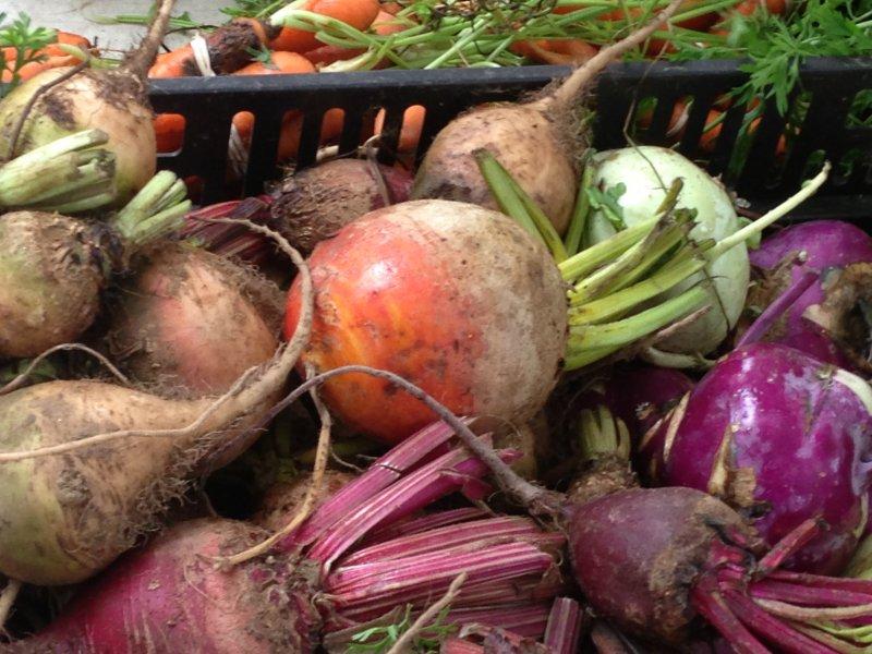 farmers-market-20