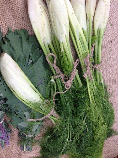 farmers-market-25